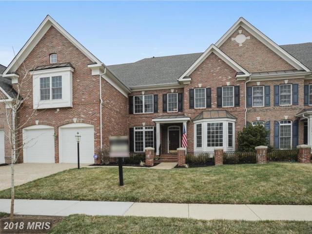 43608 Merchant Mill Terrace, Leesburg, VA 20175 (#LO10175026) :: SURE Sales Group