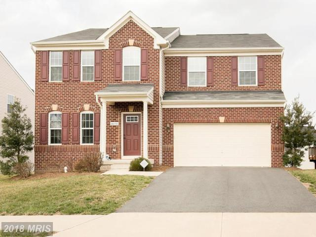 26058 Kimberly Rose Drive, Chantilly, VA 20152 (#LO10175564) :: SURE Sales Group