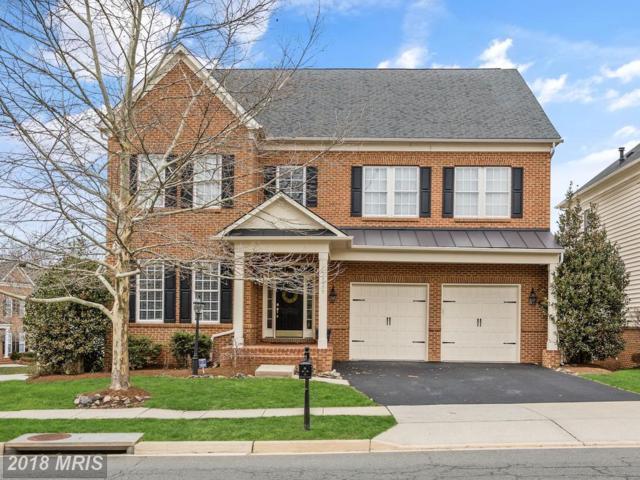 18979 Kipheart Drive, Leesburg, VA 20176 (#LO10176260) :: SURE Sales Group