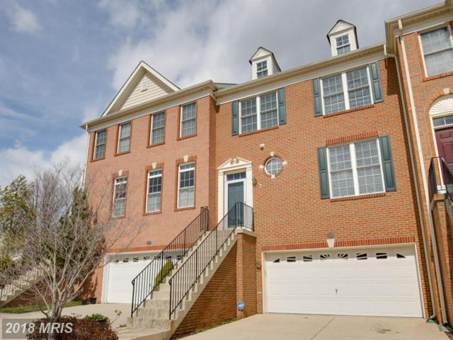 42900 Overly Square, Chantilly, VA 20152 (#LO10176276) :: Colgan Real Estate