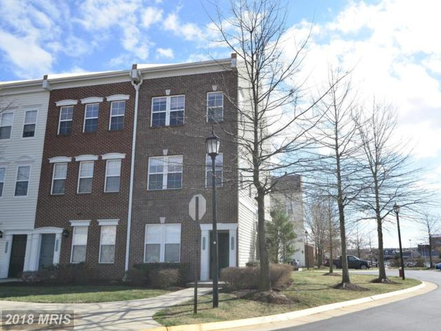 42399 Hollyhock Terrace, Ashburn, VA 20148 (#LO10180658) :: CR of Maryland
