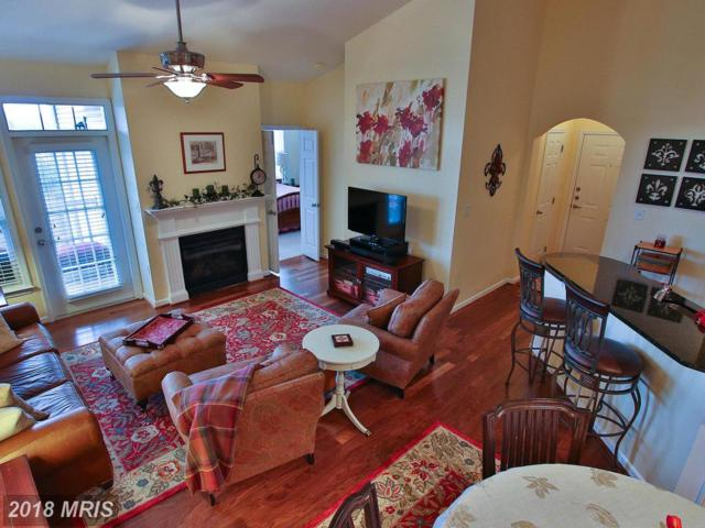 503 Sunset View Terrace SE #406, Leesburg, VA 20175 (#LO10180777) :: ExecuHome Realty