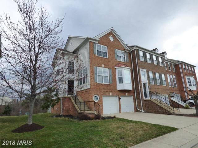 45796 Shagbark Terrace, Sterling, VA 20166 (#LO10181828) :: The Vashist Group