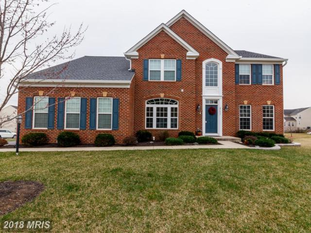 25433 Fritz Court, Aldie, VA 20105 (#LO10181966) :: The Vashist Group