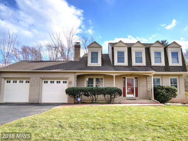 46717 Stonebrook Court, Sterling, VA 20164 (#LO10182035) :: The Vashist Group