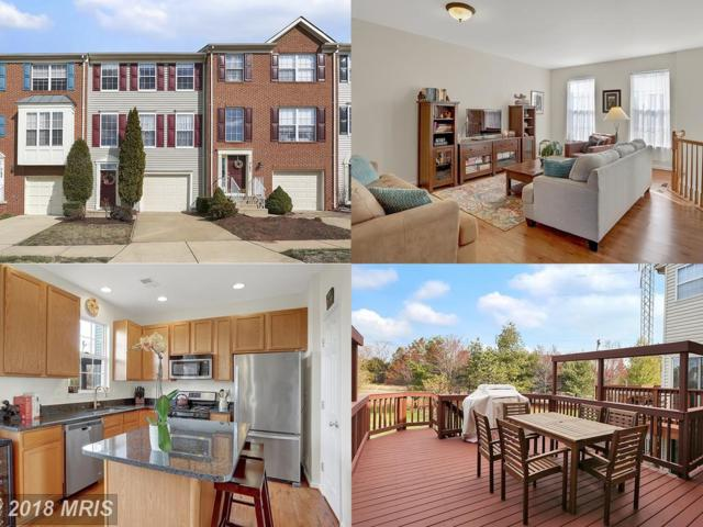 21040 Tioga Terrace, Ashburn, VA 20147 (#LO10182265) :: The Vashist Group