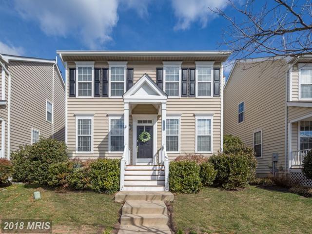 25975 Glasgow Drive, Chantilly, VA 20152 (#LO10182393) :: Long & Foster