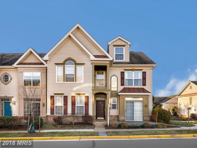 20998 Vosburg Terrace, Ashburn, VA 20147 (#LO10182461) :: The Vashist Group