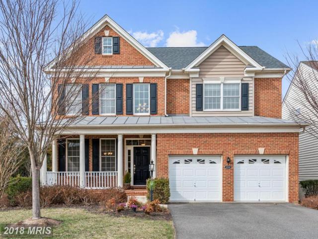43068 Addlestone Place, Ashburn, VA 20148 (#LO10182496) :: CR of Maryland