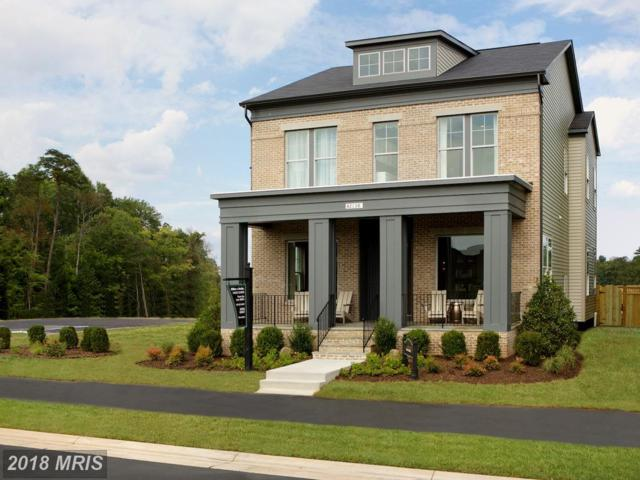 42022 Guardfish Way, Ashburn, VA 20148 (#LO10182601) :: The Vashist Group