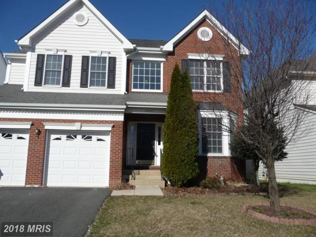 25471 Newcastle Drive, Chantilly, VA 20152 (#LO10183035) :: Pearson Smith Realty