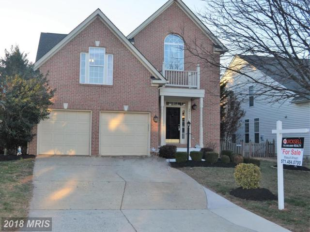 20495 Cherrystone Place, Ashburn, VA 20147 (#LO10183413) :: The Vashist Group