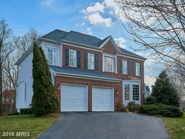42897 Cattail Meadows Place, Broadlands, VA 20148 (#LO10183422) :: The Vashist Group