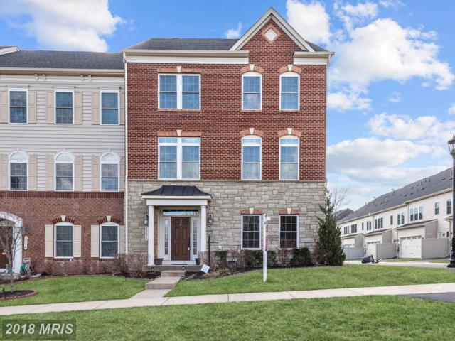 25070 Becerra Terrace, Chantilly, VA 20152 (#LO10183485) :: Long & Foster