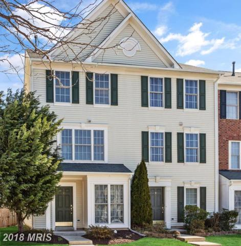 42795 Pilgrim Square, Chantilly, VA 20152 (#LO10183507) :: Circadian Realty Group