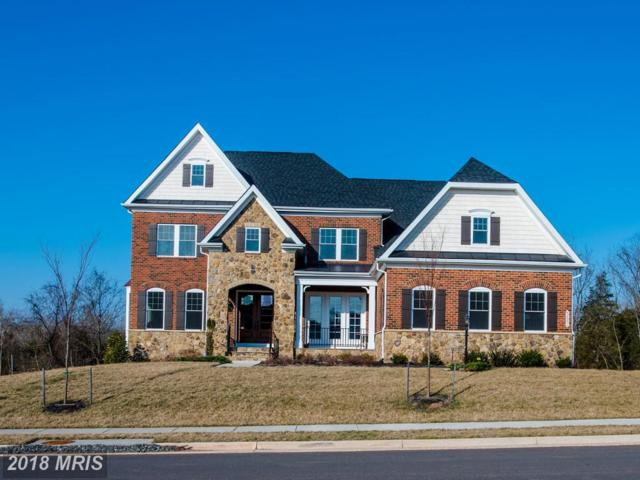 42091 Barrymoore Place, Chantilly, VA 20152 (#LO10183573) :: Circadian Realty Group
