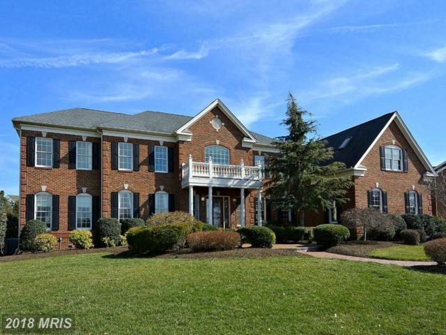 19966 Belmont Station Drive, Ashburn, VA 20147 (#LO10183741) :: Circadian Realty Group
