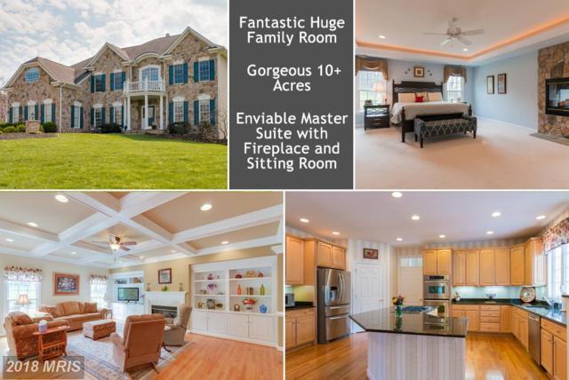 40243 Featherbed Lane, Lovettsville, VA 20180 (#LO10184025) :: Provident Real Estate