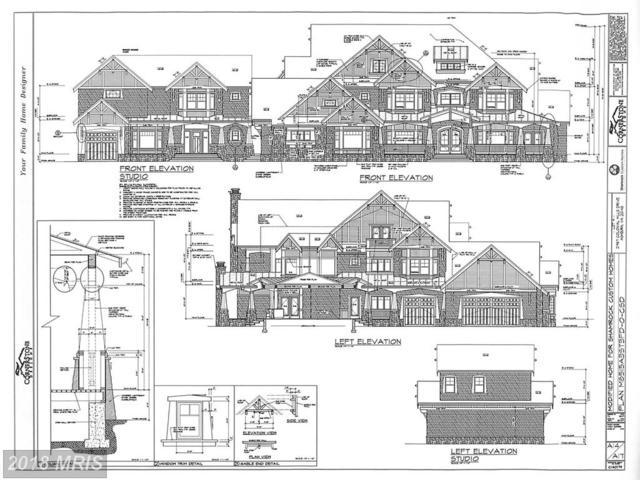 21967 Colonial Hills Drive, Ashburn, VA 20148 (#LO10184412) :: Circadian Realty Group