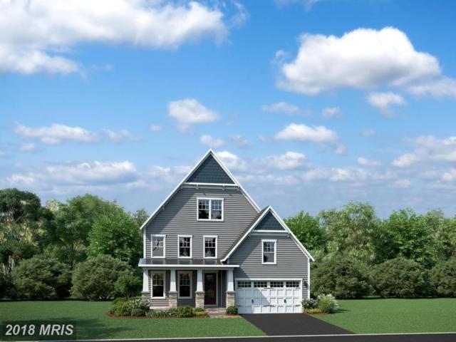 41279 Chatham Green Circle, Aldie, VA 20105 (#LO10184745) :: LoCoMusings