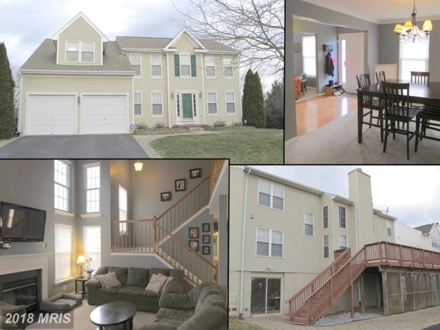 17546 Falls Place, Round Hill, VA 20141 (#LO10184799) :: SURE Sales Group