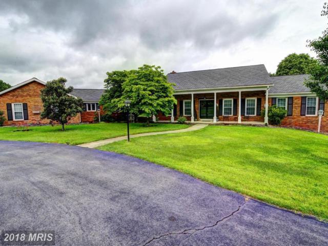 40916 Manor House Road, Leesburg, VA 20175 (#LO10185025) :: Pearson Smith Realty