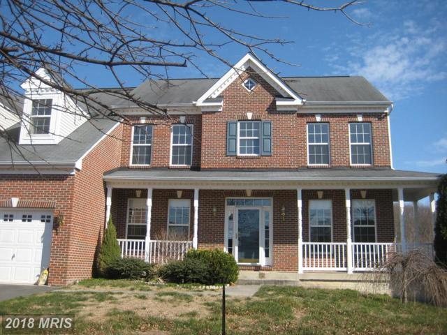 17664 Tedler Circle, Round Hill, VA 20141 (#LO10185066) :: RE/MAX Executives