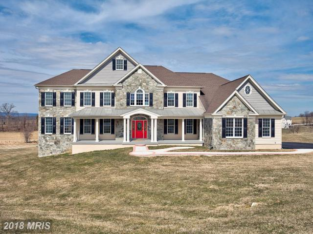 40824 Cliford Court, Waterford, VA 20197 (#LO10185264) :: RE/MAX Executives