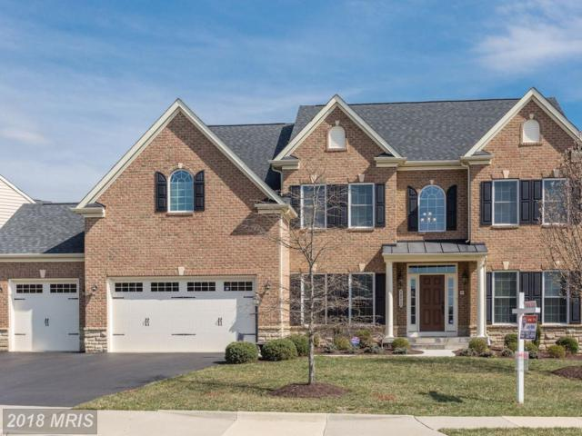 42455 Pine Forest Drive, Chantilly, VA 20152 (#LO10185787) :: Arlington Realty, Inc.