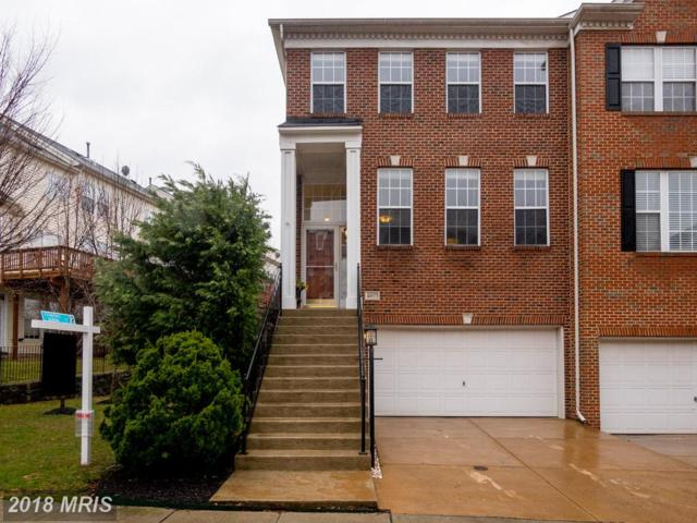 43077 Shadow Terrace, Leesburg, VA 20176 (#LO10186650) :: AJ Team Realty