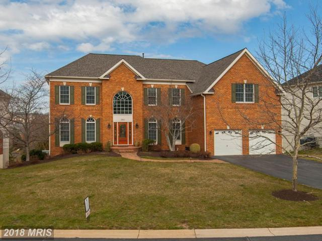 19677 Stanford Hall Place, Ashburn, VA 20147 (#LO10187501) :: Arlington Realty, Inc.