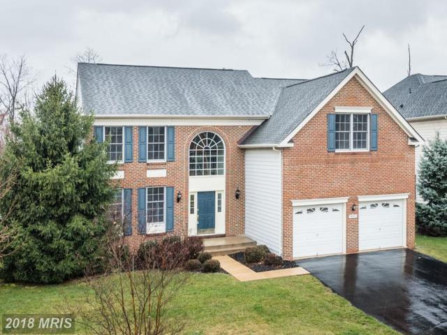 20117 Blackwolf Run Place, Ashburn, VA 20147 (#LO10188024) :: Arlington Realty, Inc.