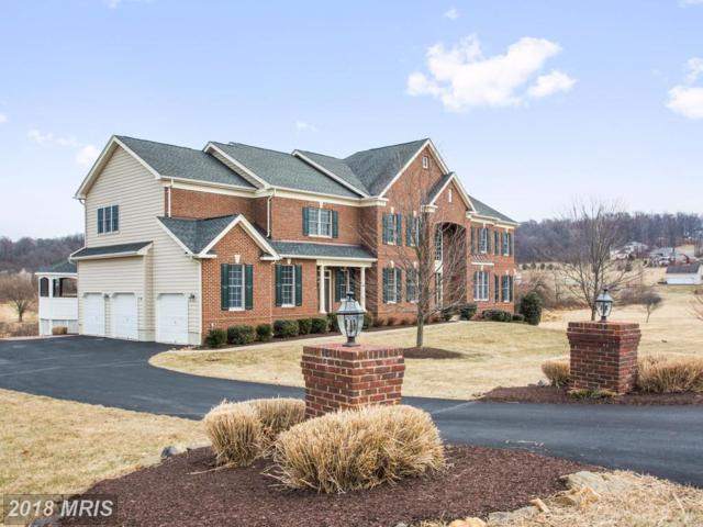 41042 Tesla Court, Waterford, VA 20197 (#LO10188140) :: RE/MAX Executives