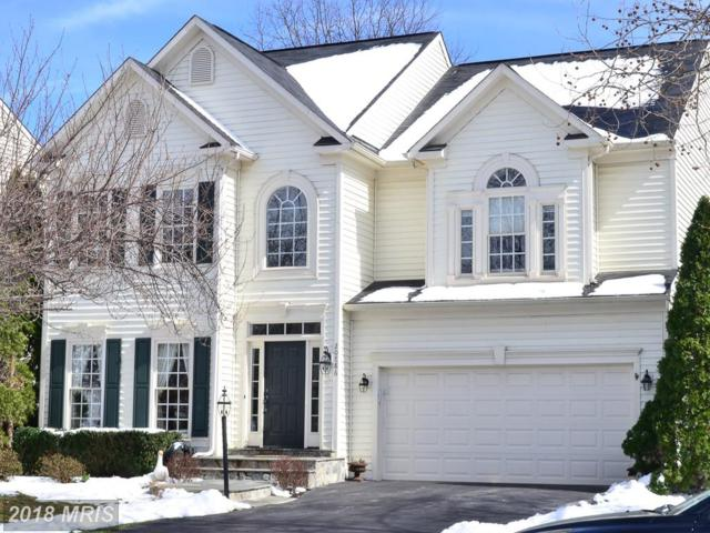 20886 Gardengate Circle, Ashburn, VA 20147 (#LO10188291) :: RE/MAX Executives