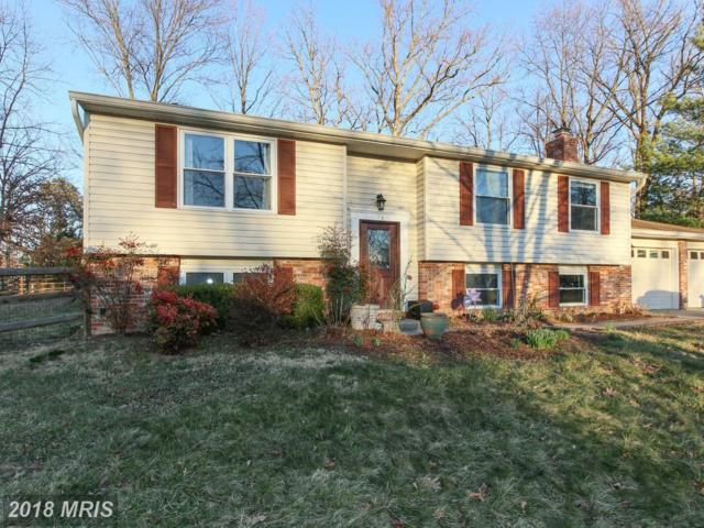 13 Candleberry Court, Sterling, VA 20164 (#LO10188718) :: LoCoMusings