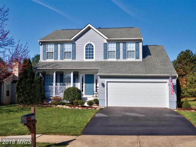 20598 Hillary Way, Ashburn, VA 20147 (#LO10192792) :: Great Falls Great Homes