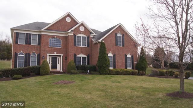 19662 Saratoga Springs Place, Ashburn, VA 20147 (#LO10194860) :: LoCoMusings