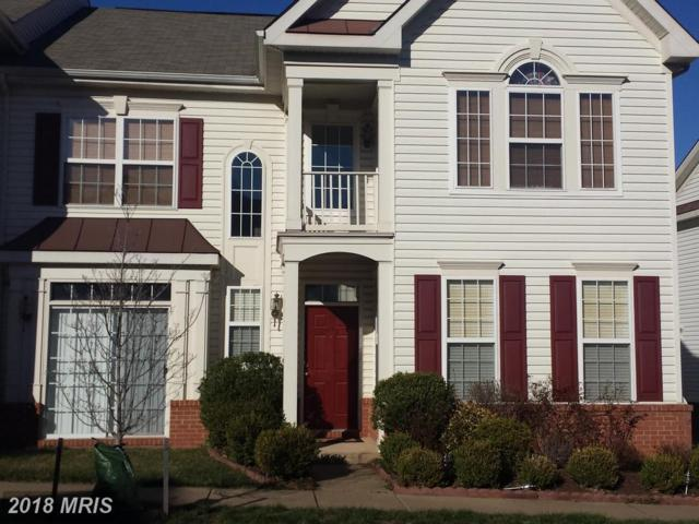 44254 Shehawken Terrace, Ashburn, VA 20147 (#LO10195239) :: The Greg Wells Team
