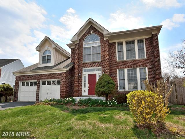 20918 Chippoaks Forest Circle, Sterling, VA 20165 (#LO10197148) :: LoCoMusings