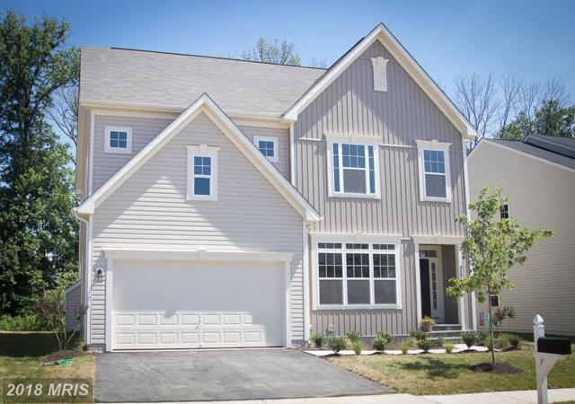 Mayfair Crown Dr, Purcellville, VA 20132 (#LO10201610) :: LoCoMusings