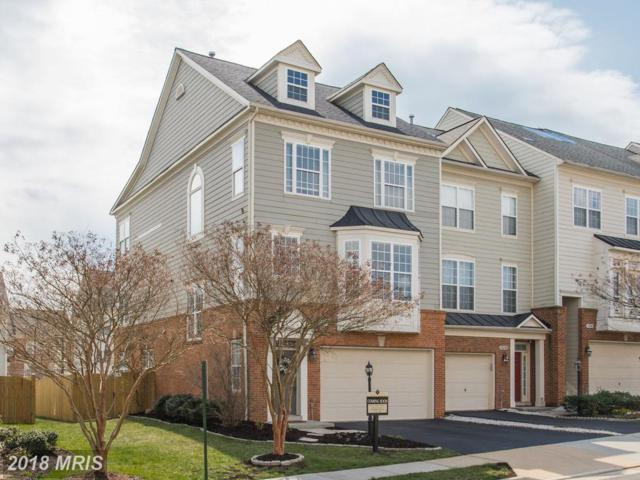 19094 Pileated Terrace, Leesburg, VA 20176 (#LO10202389) :: Keller Williams Pat Hiban Real Estate Group