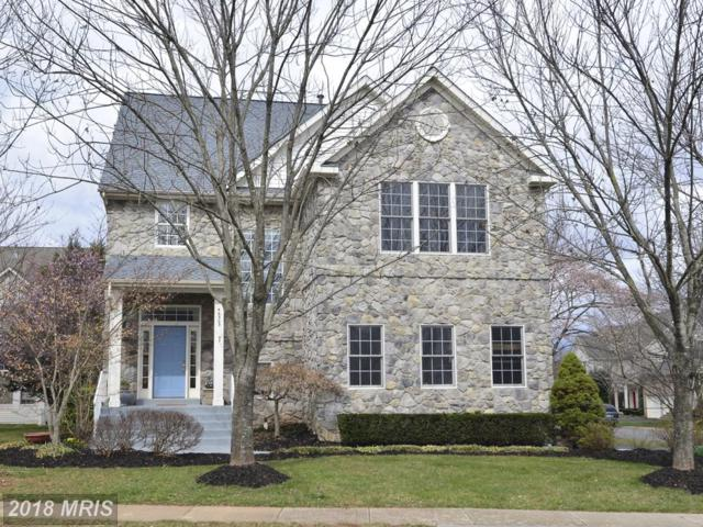 46303 Summerhill Place, Sterling, VA 20165 (#LO10204330) :: The Greg Wells Team