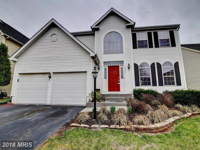 46839 Willowood Place, Sterling, VA 20165 (#LO10205060) :: The Bob & Ronna Group