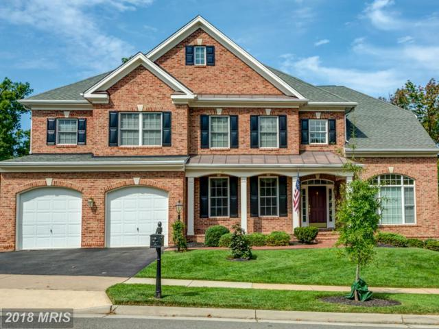 43924 Riverpoint Drive, Leesburg, VA 20176 (#LO10205324) :: Keller Williams Pat Hiban Real Estate Group
