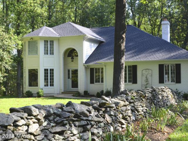 23636 Grasty Place, Middleburg, VA 20117 (#LO10205516) :: The Gus Anthony Team