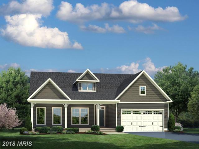 01 Spanglegrass Court, Aldie, VA 20105 (#LO10205675) :: Keller Williams Pat Hiban Real Estate Group