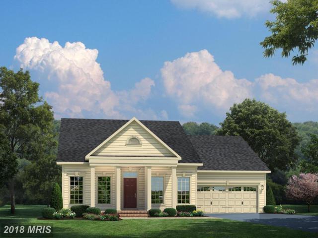 02 Spanglegrass Court, Aldie, VA 20105 (#LO10206414) :: Keller Williams Pat Hiban Real Estate Group