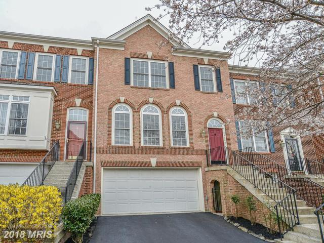 19066 Grouse Terrace, Leesburg, VA 20176 (#LO10206810) :: Keller Williams Pat Hiban Real Estate Group