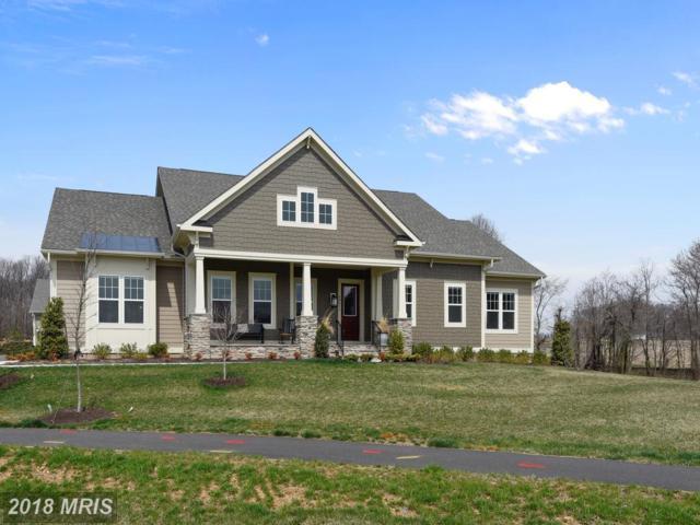40616 Rosemary Pine Lane, Aldie, VA 20105 (#LO10207329) :: Keller Williams Pat Hiban Real Estate Group
