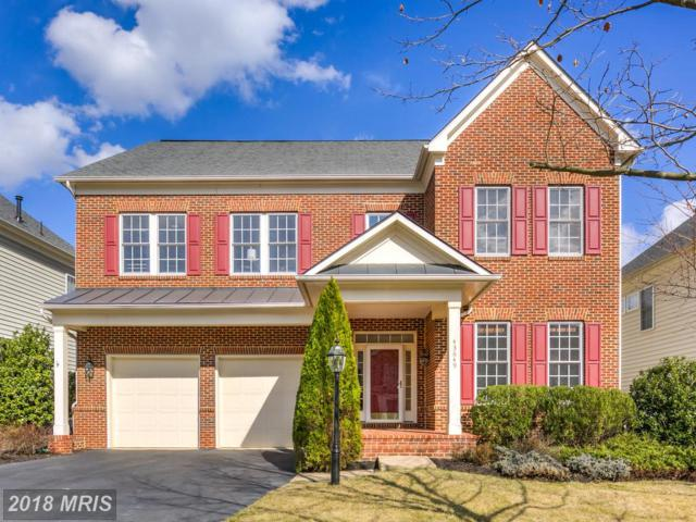 43649 Riverpoint Drive, Leesburg, VA 20176 (#LO10208146) :: Keller Williams Pat Hiban Real Estate Group